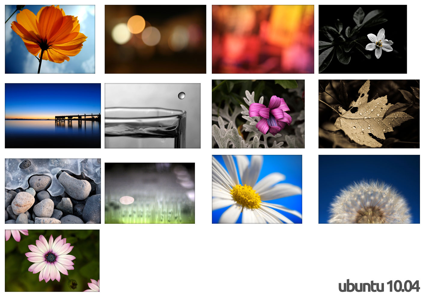 ubuntu 10.04 Wallpapers