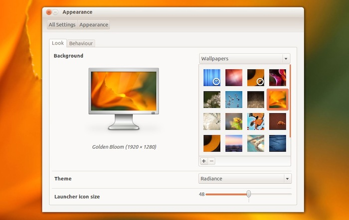 Appearance in Ubuntu 12.04