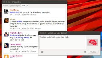 gfeedline twitter app in Ubuntu 12.04