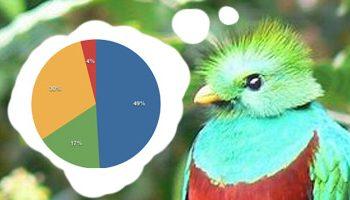 quetzal-share