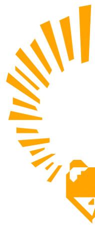 Raring Ringtail Logo Half