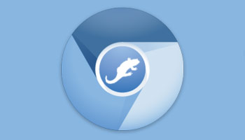 Chromium Likely to Replace Firefox As Default Browser in Ubuntu 13.10