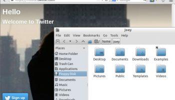 Lubuntu 14.04 Firefox