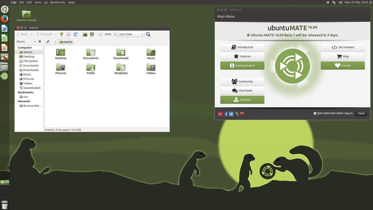 mate unity desktop style
