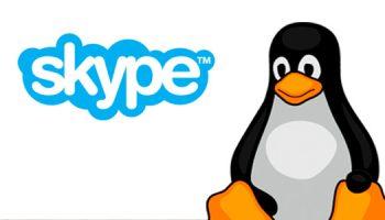 skype for linux logo
