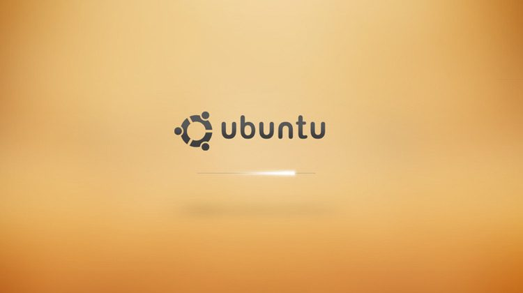 screenshot of an ubuntu xsplash