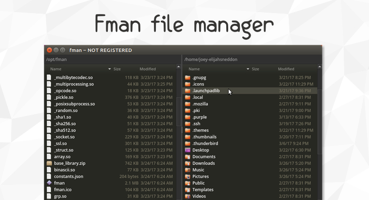 fman is Cross-Platform Dual Pane File Manager - OMG! Ubuntu!