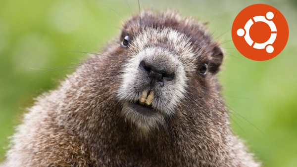 Bionic Beaver is the Ubuntu 18.04 name