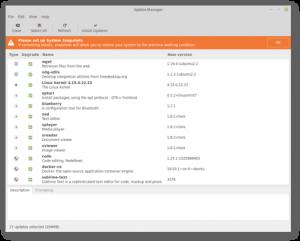 mint update in Linux Mint 19