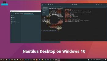 nautilus desktop on windows 10 via WSL