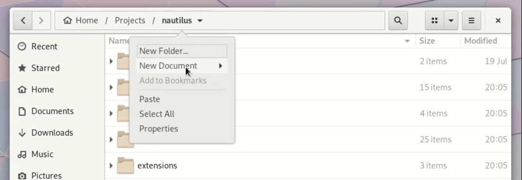 screenshot showing background items in nautilus 3.30