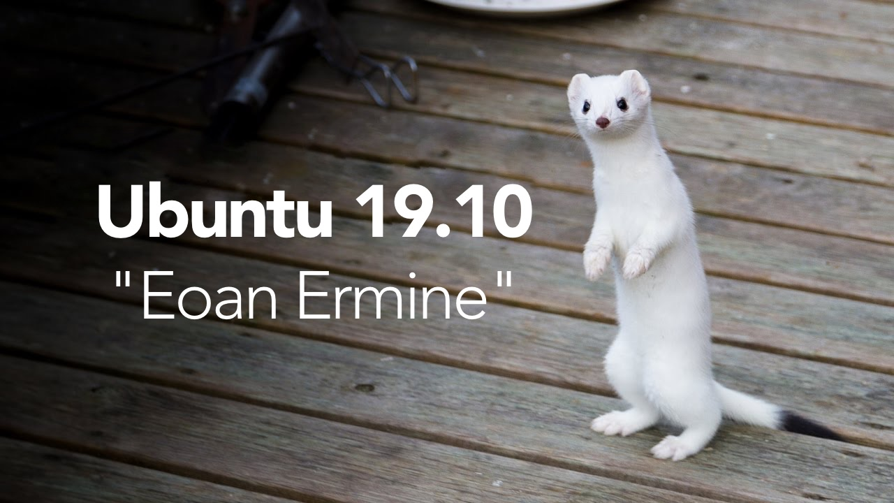 Ubuntu 19.10 Codename Revealed: Eoan Ermine.